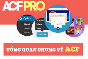 Tong Quan Chung Ve Acf